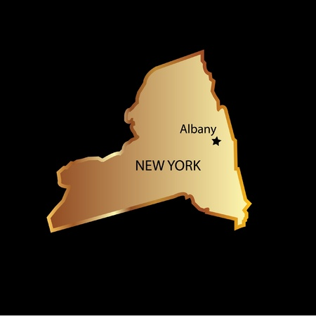 New York state usa in gold with capital name