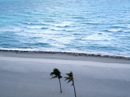 Beautiful beach in Hollywood-Florida                        photo