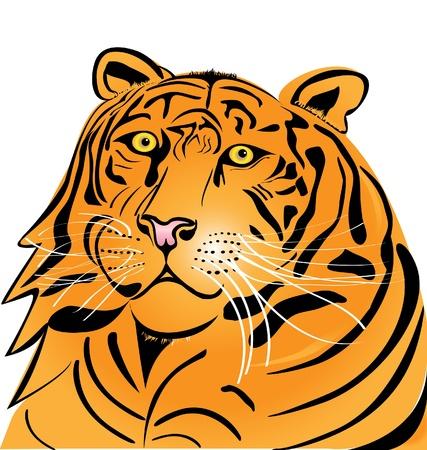 sumatran: Tiger head logo  Illustration
