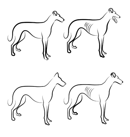 chart: Greyhound wektor psy logo Ilustracja