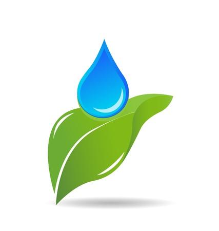 plantes aquatiques: Goutte d'eau sur le vecteur logo de la feuille