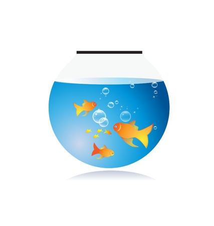 Goldfish bow with bubbles vector Vector