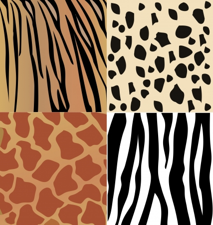 Set of giraffe, cheetah, tiger and zebra skins  Vector
