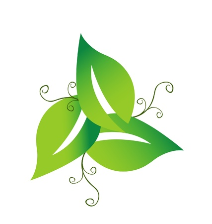 Green swirly leafs logo Vector