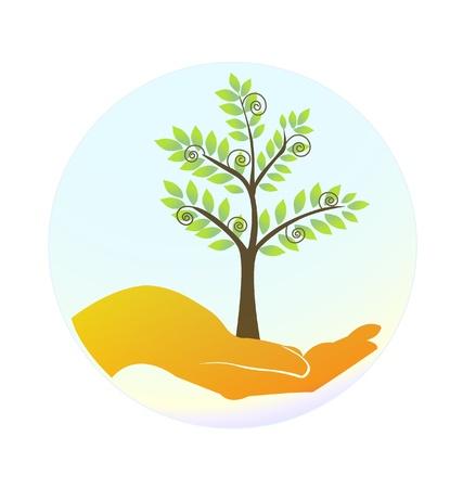 나무를 보호하는 손
