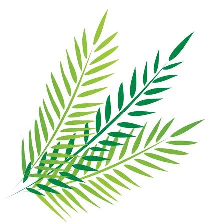 illustrazione sole: Palme nel Venerd� Santo Vettoriali