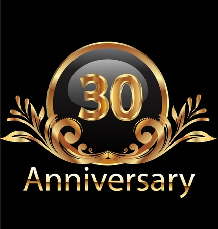 30 years anniversary birthday in gold  Vector
