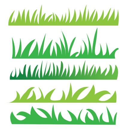 medical drawing: Set of green grass illustration vector