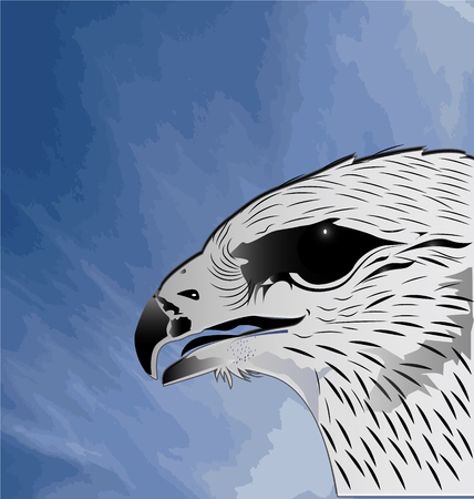 Eagle and blue sky vector Vector
