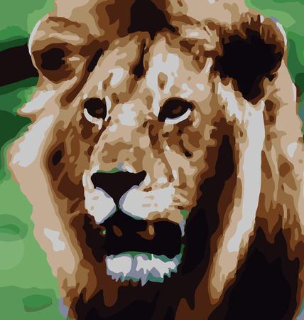 cara leon: Marco de imagen Le�n