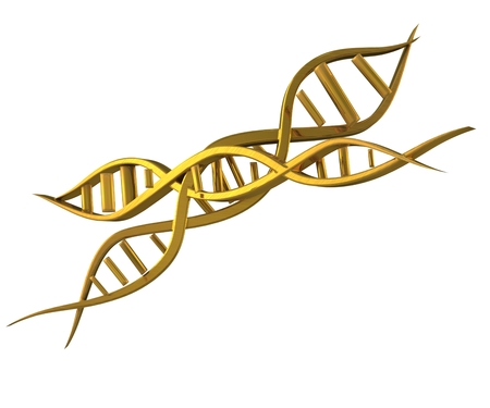 DNA golden 3D  photo