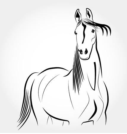 Horse stylized portrait icon vector Illustration