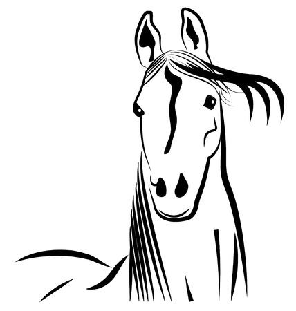 Horse head stylized portrait icon vector