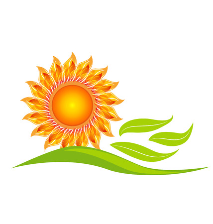 Sunflower icon design vector illustration Vector