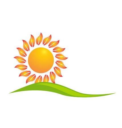 Sunflower icon design vector illustration Vector