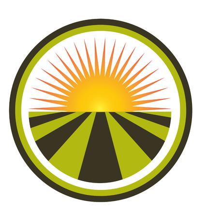 sun energy: Sunset and field icon  Illustration