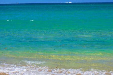 Blue ocean from the beach photo