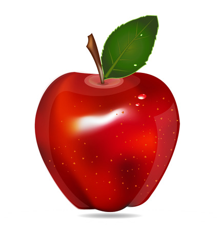manzana: Red Apple fruta vector aislado en el fondo blanco