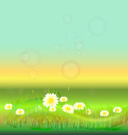 leaf water drop: White flowers in a prairie background vector design