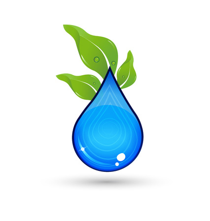 Drop of Water with green leafs vector icon