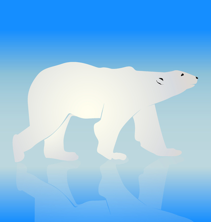 bear silhouette: Vector bear silhouette icon background