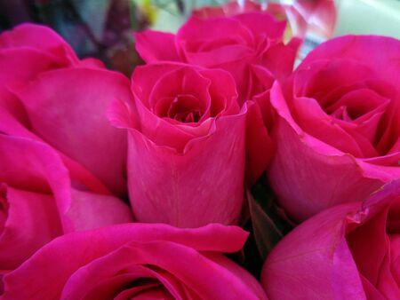 Roses wedding bouquet photo
