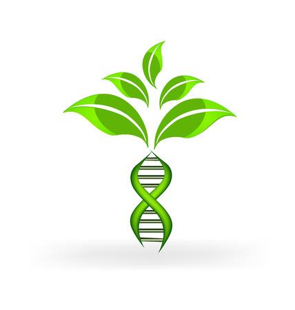 DNA のシンボル植物ベクター デザイン  イラスト・ベクター素材