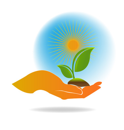 plant hand: Hand care plant , ecology concept vector