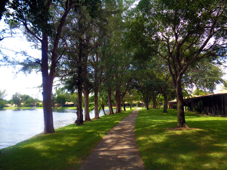 free background: Path way around the lake picture photo background