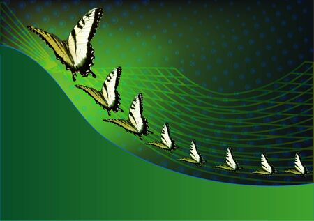 green butterfly: Green background with butterflies around