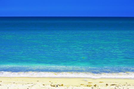 Palm Beach Florida USA with vivid blue background color