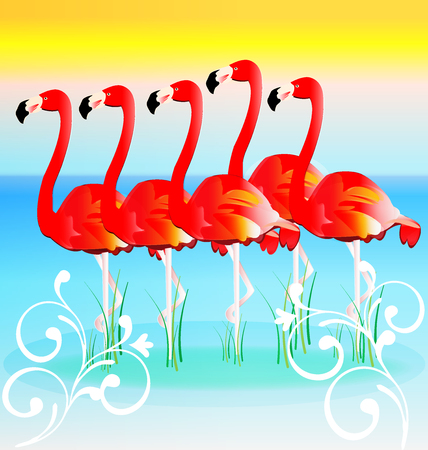 row: Flamingos in row swirly tropical background vector