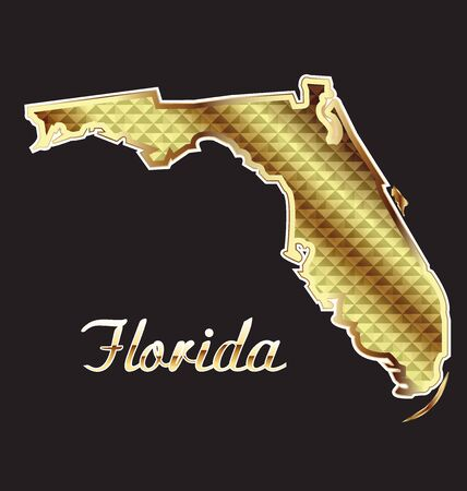 southern: Gold Florida Map vector image