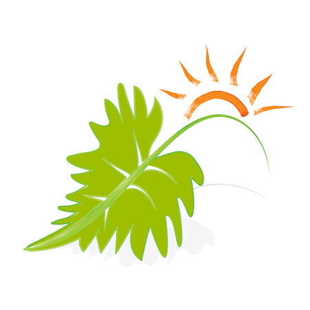 curative: Ecology concept sun and leaf vector image