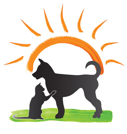 Cat and dog in the park with a sunny day vector image