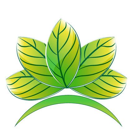 budha: Green lotus plant icon vector image design Illustration
