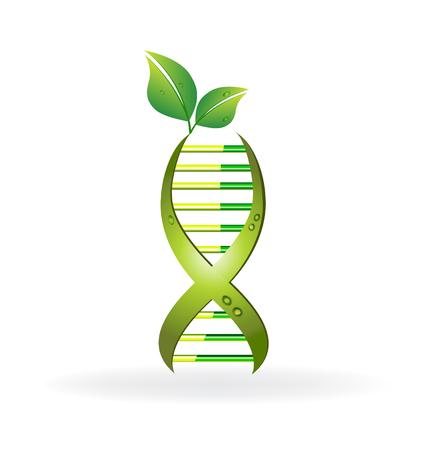 logo medicina: ADN celular con el diseño de las hojas verdes del icono del vector Vectores