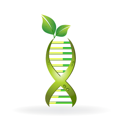 DNA cell with green leafs icon vector design