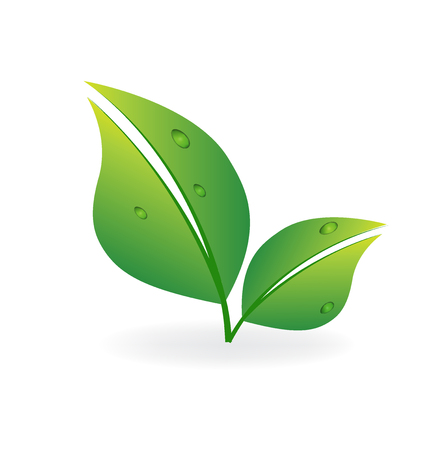 Green leafs healthy nature icon vector image Çizim