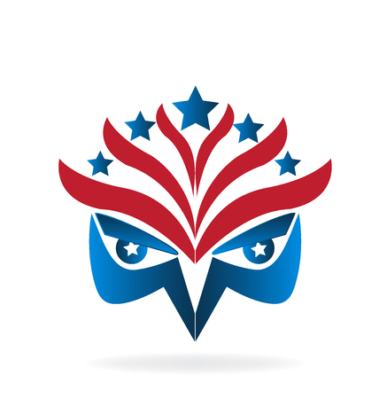Eagle face symbol USA flag vector image