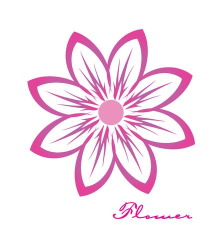 Pink flower closeup vector image logo design