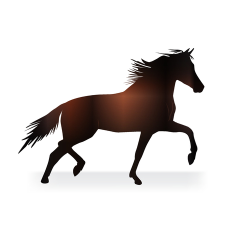 Stallion beatiful horse logo vector