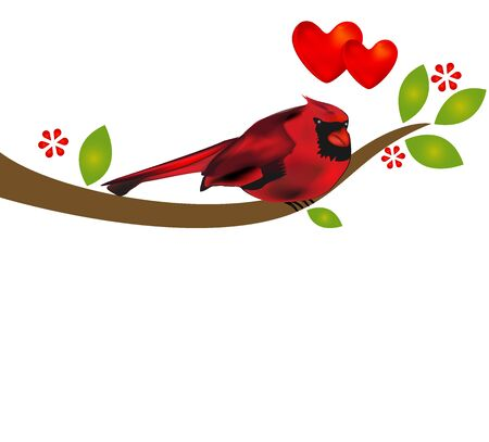 Love bird hearts cardinale on tree logo vector