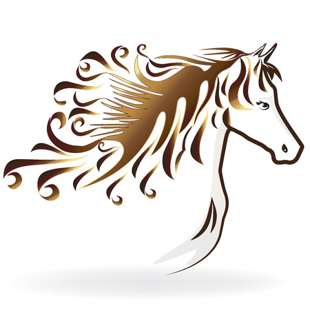 Horse with a swirly hair