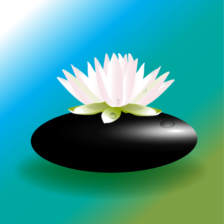 royalty free: Pink lotus flower on zen stone background vector