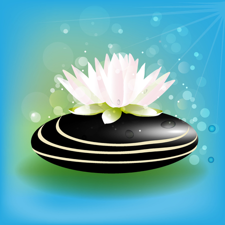 salon and spa: Beautiful lotus flower on zen stone blue background vector