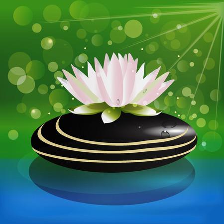 coeur en diamant: Belle fleur de lotus sur le vecteur de fond de pierre zen
