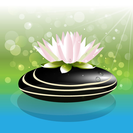 asian business: Beautiful lotus flower on zen stone background vector