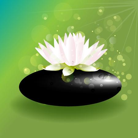 Beautiful lotus flower on zen stone green background vector Illustration