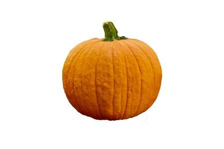 Pumpkin isolated image